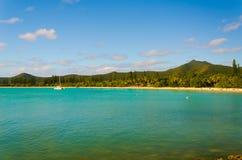 Vista da ilha tropical da selva da floresta tropical com pinheiros imagens de stock royalty free