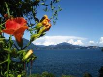 Vista da Isola Bella Lago Maggiore Italia Immagini Stock Libere da Diritti