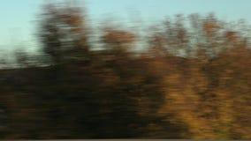 Vista da janela de um carro da equitação filme