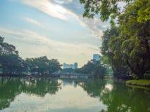 Vista da lagoa e das árvores no parque com o céu azul nebuloso fotos de stock royalty free