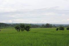 Vista da montanha imagem de stock