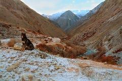 Vista da montanha Fotos de Stock Royalty Free
