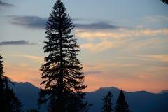 Vista da montanha ao oeste, a Abkhásia de Pshegishvah, Cáucaso Foto de Stock Royalty Free