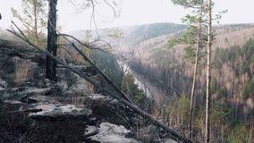 Vista da montanha ao rio vídeos de arquivo