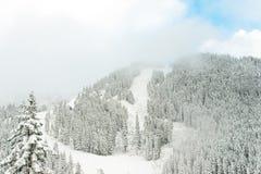 Vista da montanha na manhã, Washington da neve Fotos de Stock