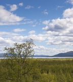 Vista da Nikkaloukta sopra il Circolo polare artico in Svezia del Nord fotografia stock