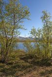 Vista da Nikkaloukta Svezia sopra il Circolo polare artico immagini stock libere da diritti