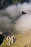 Vista da Ordiales nella sosta naturale di Picos Fotografia Stock Libera da Diritti