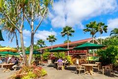 Vista da plantação do abacaxi de Dole em Wahiawa, destino da excursão fotos de stock