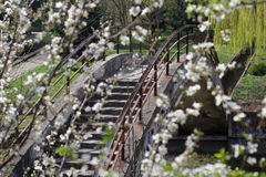 Vista da ponte, através do jardim de florescência Imagens de Stock