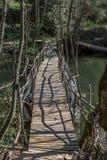 Vista da ponte ecológica, feita com materiais reciclados, na rota pedestre no rio de Dão imagens de stock royalty free
