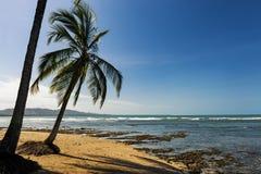 Vista da praia com as palmeiras em Puerto Viejo de Talamanca, Costa Rica Fotos de Stock Royalty Free