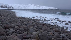 Vista da praia de pedras redondas, dia de fevereiro Costa do mar de Barents video estoque