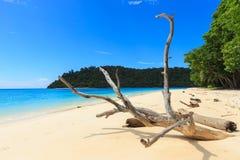 Vista da praia do verão da ilha de Rok em Phuket, Tailândia Imagem de Stock
