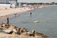 Vista da praia e do mar com o cão branco na água na estância turística de Warnemunde, Alemanha fotografia de stock royalty free