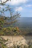 Vista da praia, mar Báltico, Polônia Foto de Stock Royalty Free