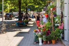 Vista da rua de Tirana Loja de florista, Tirana, Albânia fotos de stock