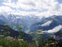 Vista da Schynigge Platte Svizzera Fotografia Stock Libera da Diritti