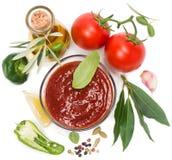 Vista da sopra della ciotola di salsa al pomodoro con gli ingredienti freschi Fotografie Stock Libere da Diritti