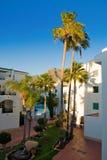 Tenerife, isole Canarie Fotografie Stock Libere da Diritti