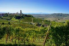 Vista da torre de Barbaresco e do vale alba Fotos de Stock Royalty Free