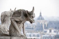 Vista da torre de Notre Dame Imagens de Stock Royalty Free