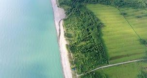 Vista da un'altezza del paesaggio con i campi e gli alberi archivi video
