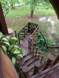 Vista da una casa di albero Immagini Stock
