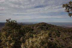 Vista da una montagna con gli alberi Fotografie Stock