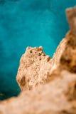 Vista da una scogliera verticale dal mare Immagini Stock