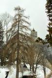 Vista da vila do farelo, a Transilvânia Imagens de Stock