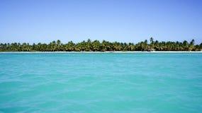 Vista dal mare sulla spiaggia di Isla Saona Immagini Stock Libere da Diritti