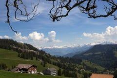 Vista dal mounatin di Rigi con le alpi, Svizzera Fotografia Stock