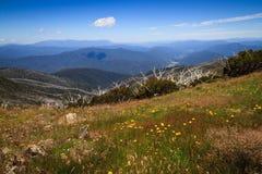 Vista dal Mt Feathertop Fotografia Stock Libera da Diritti