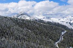 Vista dal Mt Washburn, parco nazionale di Yellowstone immagini stock libere da diritti