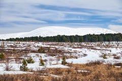 Vista dal passo di montagna Seminski in Altai sul supporto Sarlyk sotto Immagine Stock Libera da Diritti