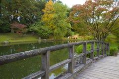 Vista dal ponte sullo stagno in giardino giapponese fotografia stock libera da diritti