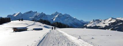 Vista dal Wispile, alpi svizzere di panorama Immagine Stock