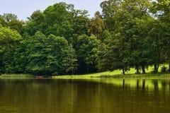 Vista dall'acqua sulla riva del lago nella foresta fotografia stock
