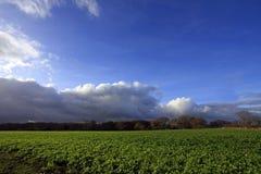 Vista dall'alloggiamento di sepoltura di Lligwy Fotografia Stock Libera da Diritti