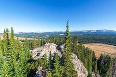 Vista dall'alta allerta del parco Immagine Stock Libera da Diritti