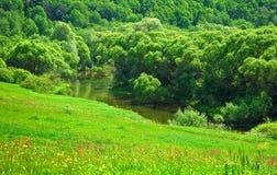 Vista dall'alta banca del fiume Fotografia Stock Libera da Diritti