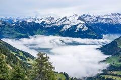 Vista dall'alta cima con l'oceano della nebbia qui sotto e dalla montagna dell'alpe in Fotografia Stock Libera da Diritti