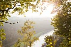 Vista dall'alta montagna per restringere fiume nella foresta Immagini Stock Libere da Diritti