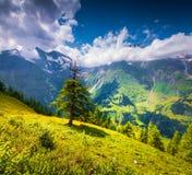 Vista dall'alta strada alpina di Grossglockner Immagine Stock