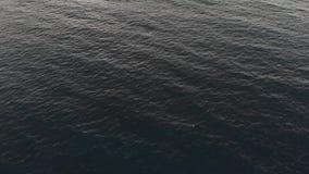 Vista dall'alto in basso delle onde del mare Ondulazioni del mare Siluetta dell'uomo Cowering di affari I precedenti del mare La  stock footage