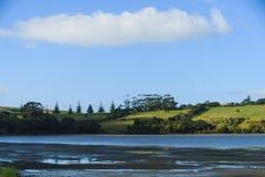 Vista dalla baia di Okoromai sul parco Nuova Zelanda di Shakespear Fotografie Stock Libere da Diritti