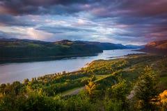 Vista dalla Camera di vista, gola di sera del fiume Columbia Fotografia Stock