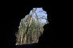 Vista dalla caverna Fotografia Stock Libera da Diritti