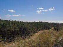 Vista dalla duna Immagini Stock Libere da Diritti